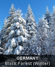 Highlights - Germany - Black Forest