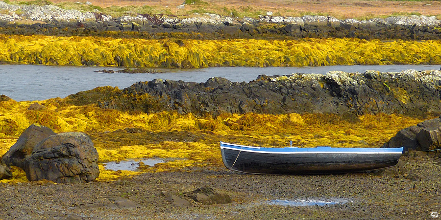 Ireland - Connemara - Low Tide