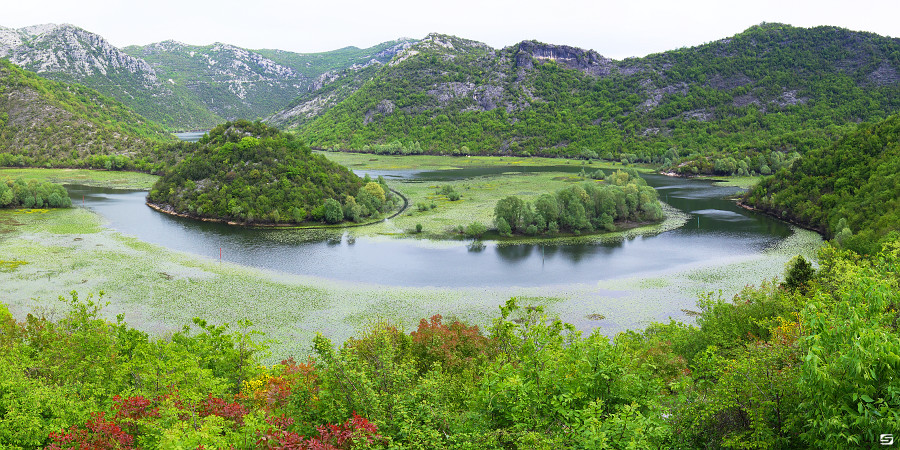 Montenegro - Lake Skadar - Green Bend