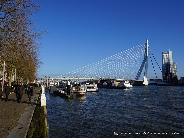 Netherlands Rotterdam Picture