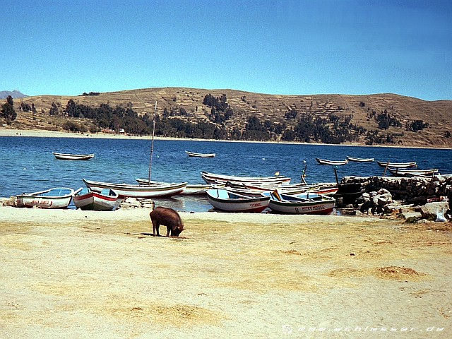 Peru Lake Titicaca Picture