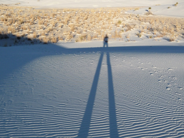 USA White Sands Picture